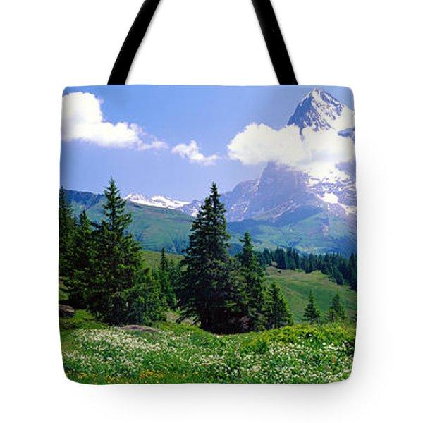 Alpine Scene Near Murren Switzerland Tote Bag