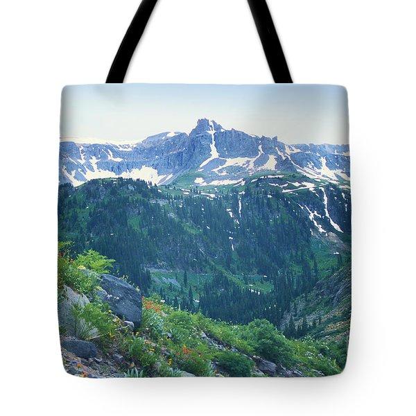Alpine Vista Near Durango Tote Bag by Teri Brown
