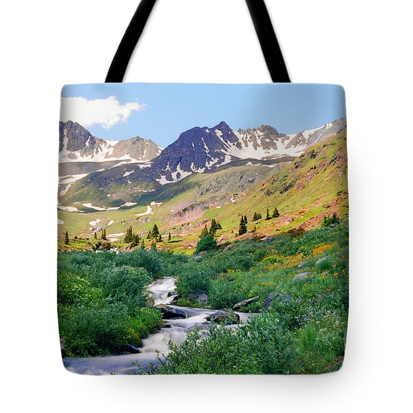 Tote Bag featuring the photograph Alpine Vista With Wildflowers by Teri D Brown