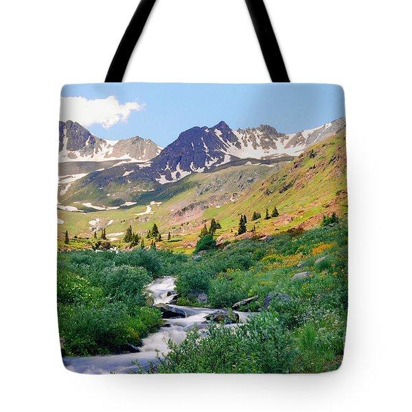 Alpine Vista With Wildflowers Tote Bag