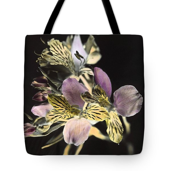 Tote Bag featuring the photograph Alstroemeria by Lana Enderle