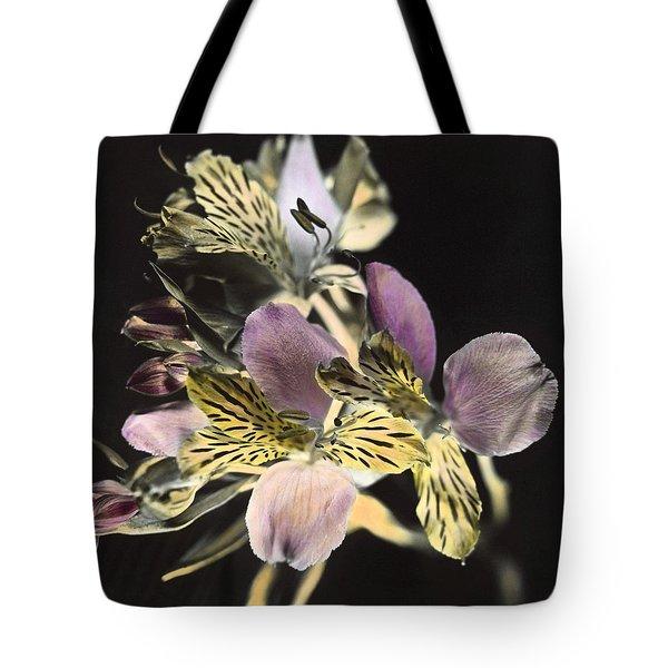 Alstroemeria Tote Bag by Lana Enderle