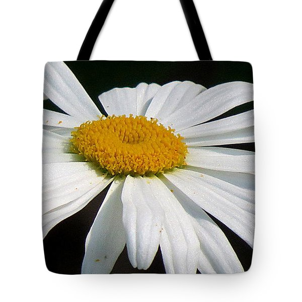 Tote Bag featuring the photograph Always by France Laliberte