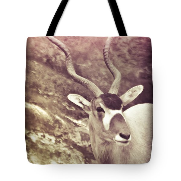 Always In The Way Tote Bag by Trish Tritz
