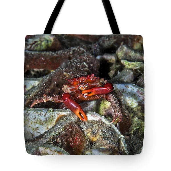 Am I Red? Tote Bag