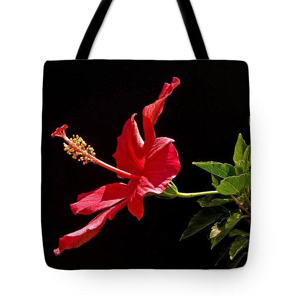 Amapola Tote Bag