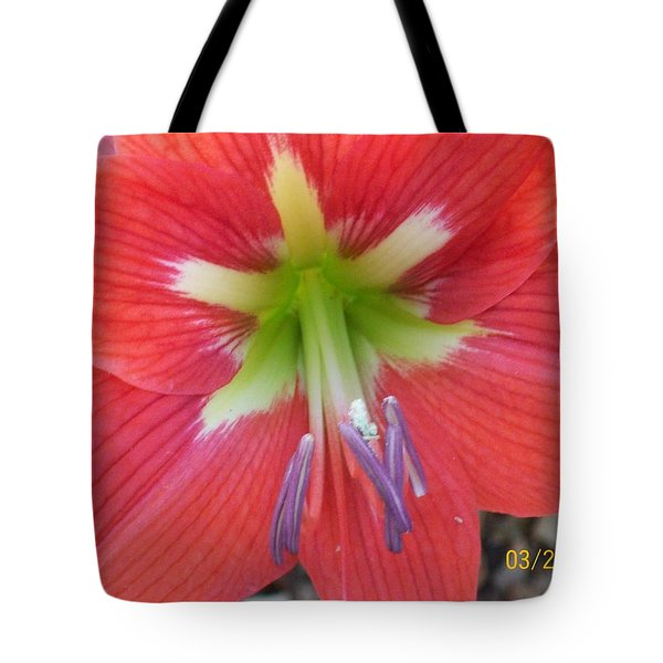 Tote Bag featuring the photograph Amarylis by Belinda Lee
