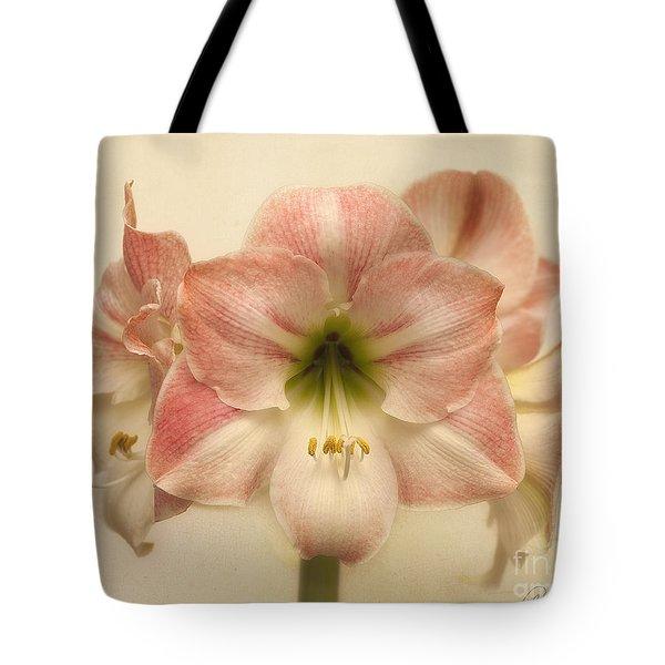 Amaryllis Apple Blossom Tote Bag