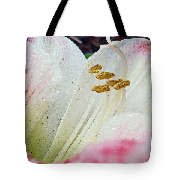 Tote Bag featuring the photograph Amaryllis Belladonna by Judy Hall-Folde