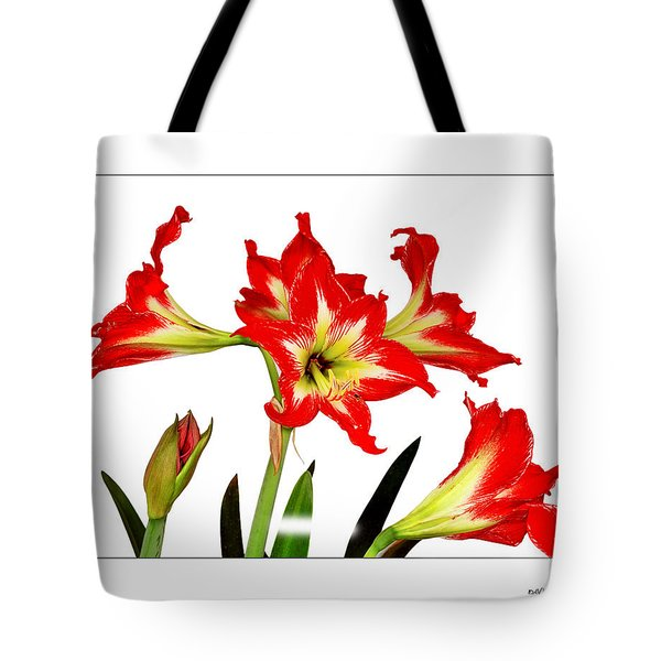 Tote Bag featuring the photograph Amaryllis On White by David Perry Lawrence