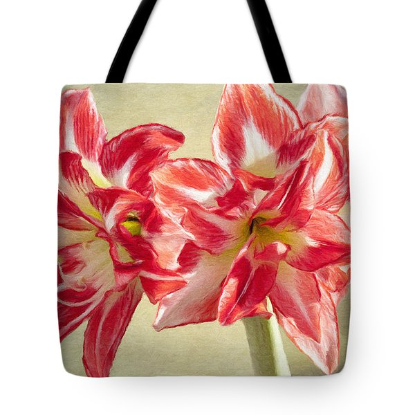 Amaryllis Red Tote Bag by Jeff Kolker
