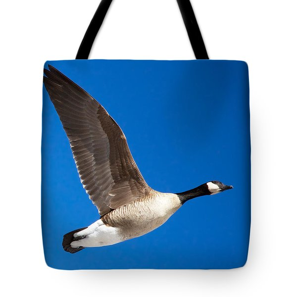 Amazing One Winged Flying Goose Tote Bag by Stephen  Johnson