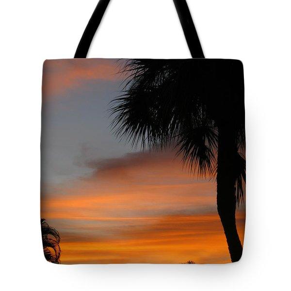 Amazing Sunrise In Florida Tote Bag