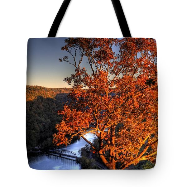 Amazing Tree At Overlook Tote Bag