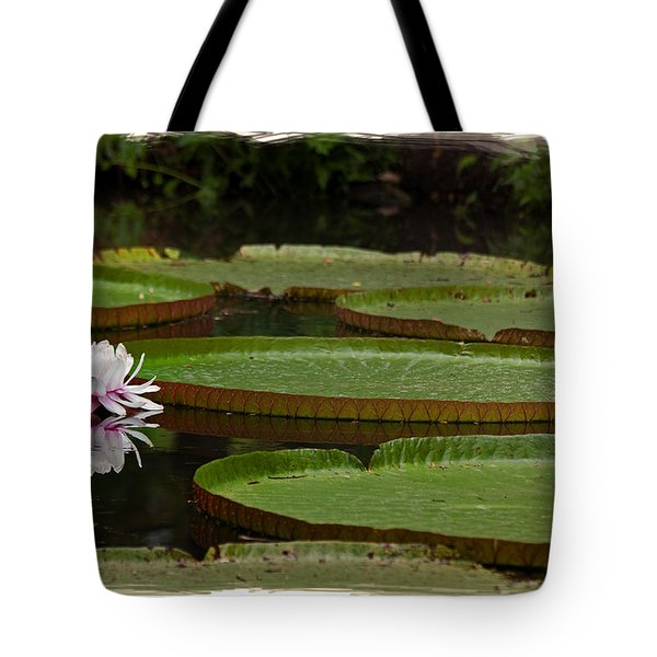 Amazon Lily Pad Tote Bag by Farol Tomson