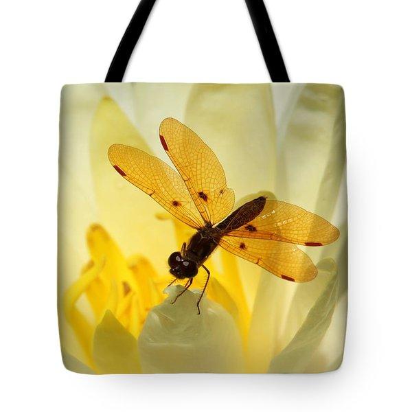 Amber Dragonfly Dancer Tote Bag