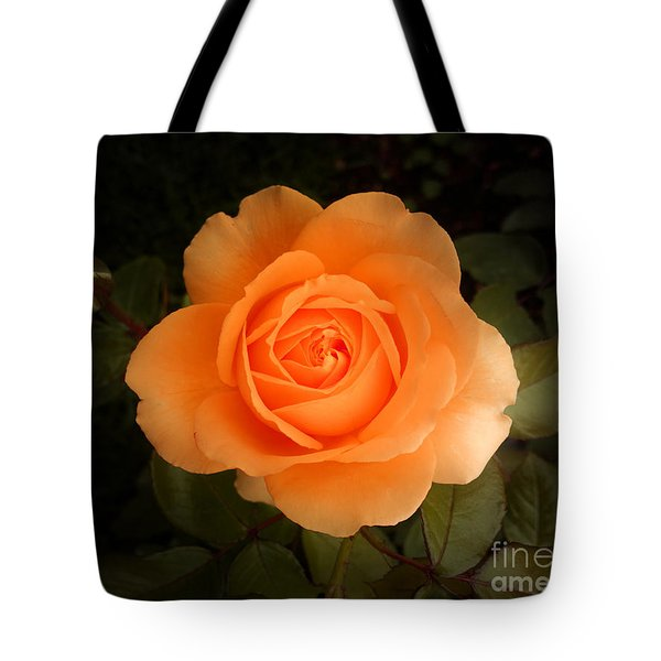 Amber Flush Rose Tote Bag