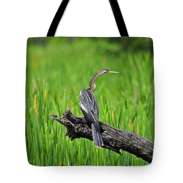American Anhinga Tote Bag by Al Powell Photography USA