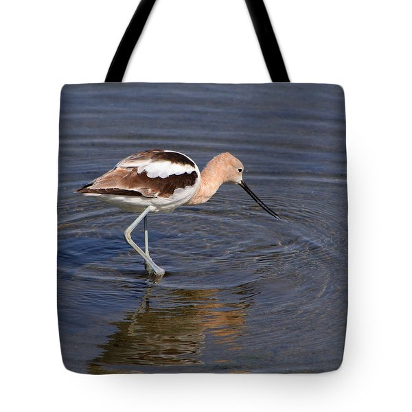 Tote Bag featuring the photograph American Avocet by Bob and Jan Shriner