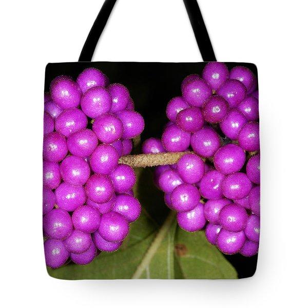 American Beautyberry Tote Bag by Scott Camazine