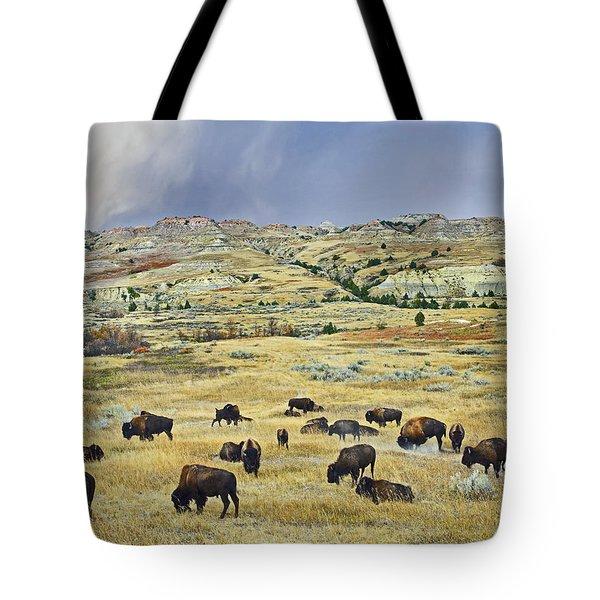American  Bison Herd Grazing Tote Bag by Tim Fitzharris