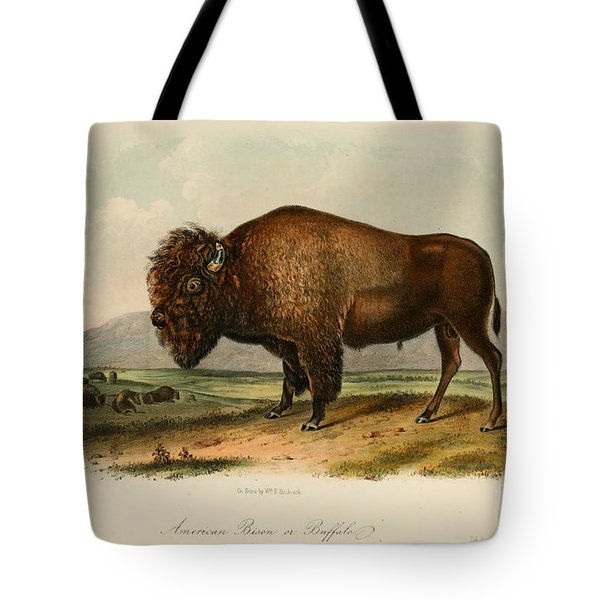 American Bison  Tote Bag by Celestial Images