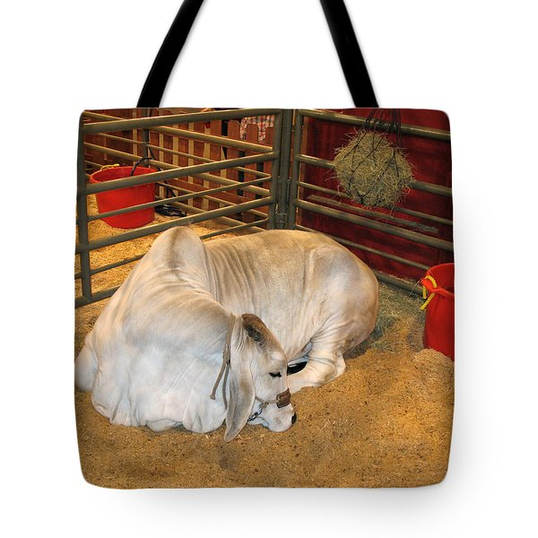 Tote Bag featuring the photograph American Brahman Heifer by Connie Fox