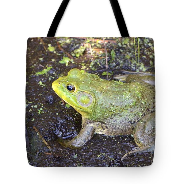 Tote Bag featuring the photograph American Bullfrog by Kathy Gibbons