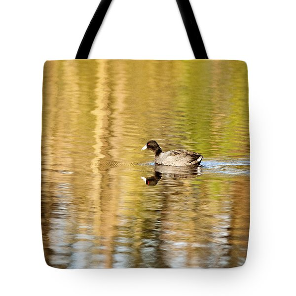 American Coot Tote Bag by Scott Pellegrin