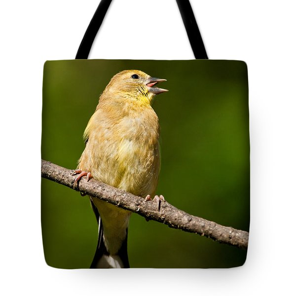 American Goldfinch Singing Tote Bag