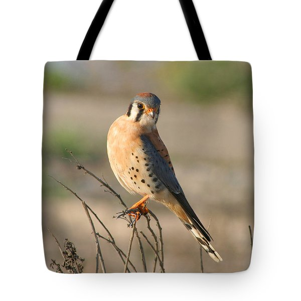 Tote Bag featuring the photograph American Kestrel by Bob and Jan Shriner