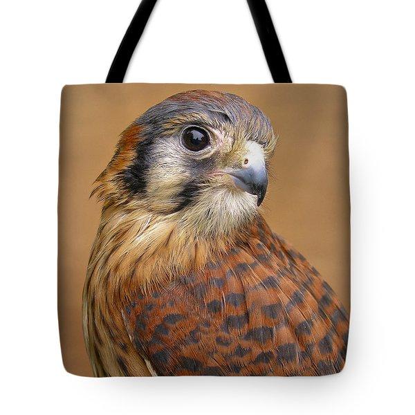 American Kestrel Tote Bag