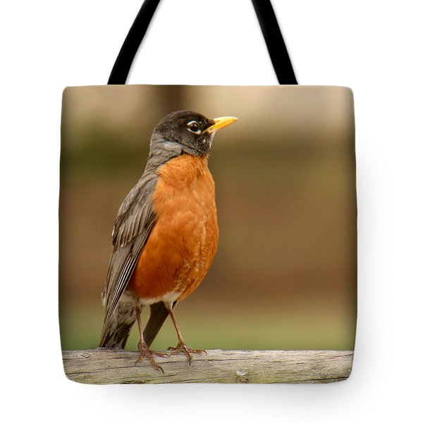 Tote Bag featuring the photograph American Robin by Bob and Jan Shriner