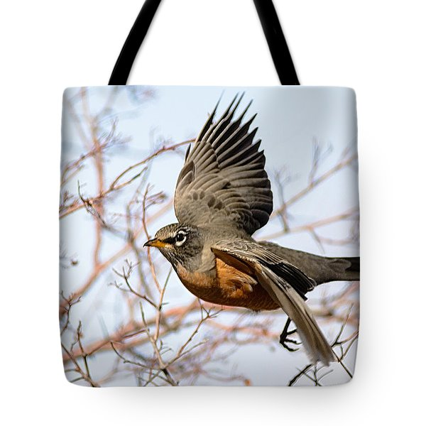 American Robin In Flight Tote Bag by Stephen  Johnson