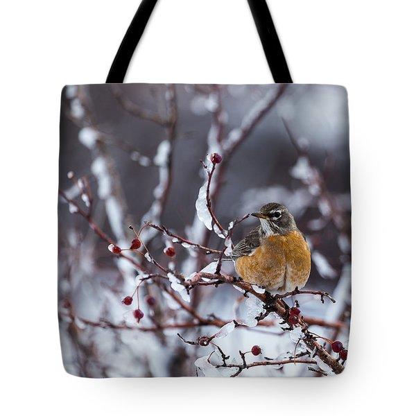 American Robin Tote Bag