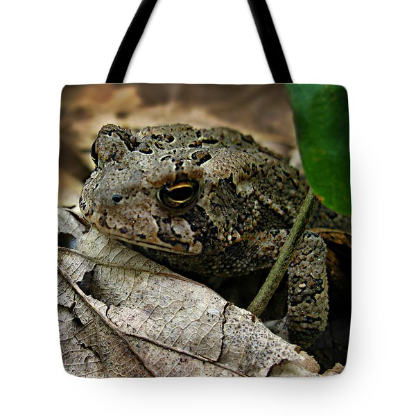 Tote Bag featuring the photograph American Toad by William Tanneberger