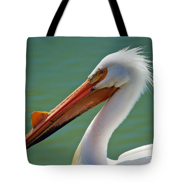 American White Pelican At Cherry Creek Tote Bag by Stephen  Johnson