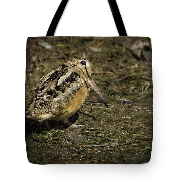 American Woodcock 2 Tote Bag