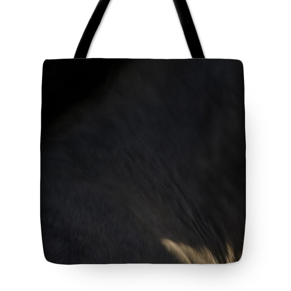 Tote Bag featuring the photograph Americano 18 by Catherine Sobredo