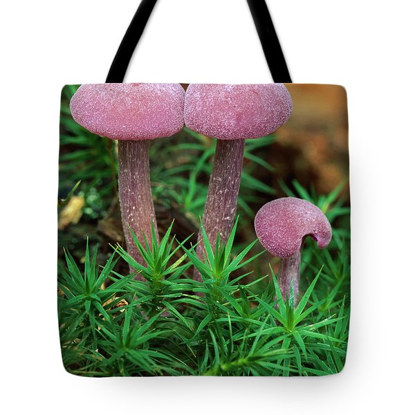 Amethyst Deceiver Tote Bag by Thomas Marent