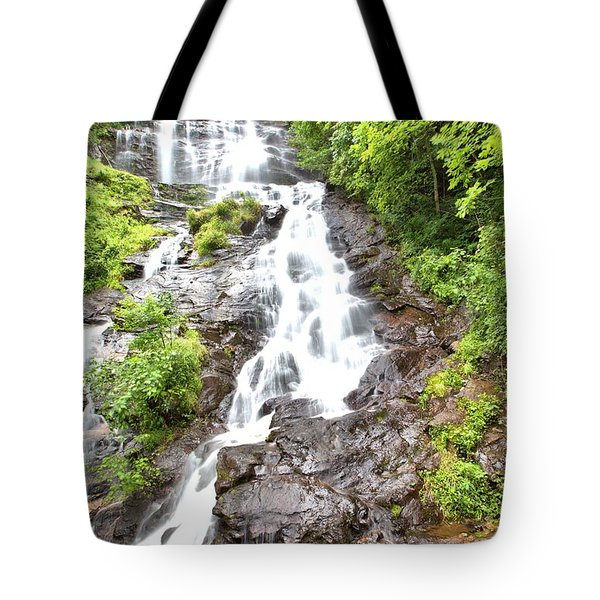 Amicalola Falls Tote Bag by Gordon Elwell