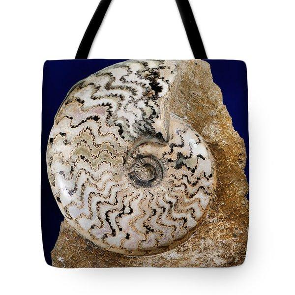 Ammonite Fossil Tote Bag by Scott Camazine