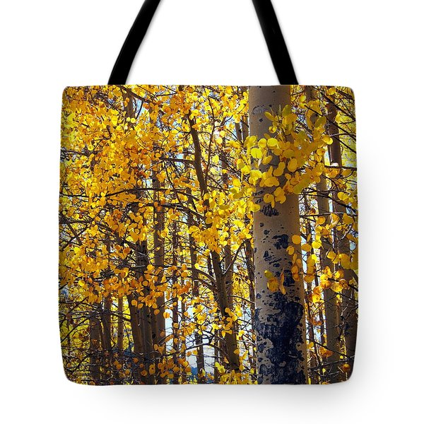 Among The Aspen Trees In Fall Tote Bag