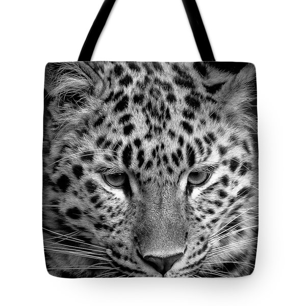 Amur Leopard In Black And White Tote Bag