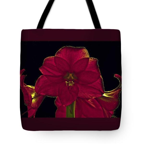 Amyrillis Tote Bag