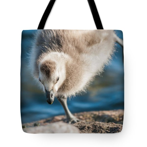 An Acrobatic Goose Tote Bag by Janne Mankinen