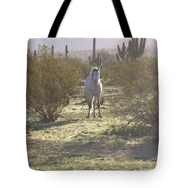 Tote Bag featuring the photograph An Arizona Morning by Ruth Jolly