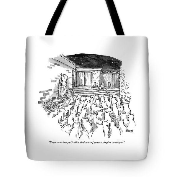An Assembly Of Cats In A Backyard Led By Three Tote Bag