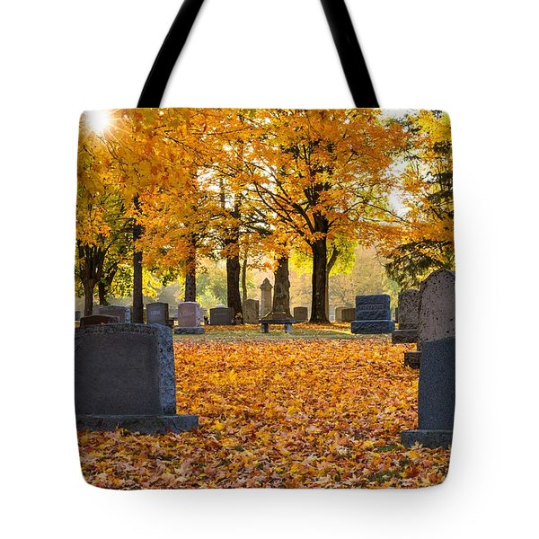 Tote Bag featuring the photograph Forest Hill Autumn Light  by Mary Amerman