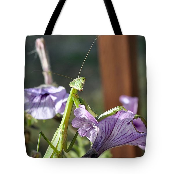 Tote Bag featuring the photograph An Autumn Surprise by Verana Stark